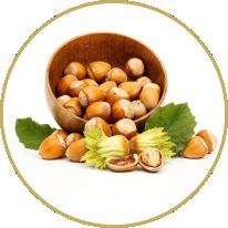 Corylus avellana Nut Oil