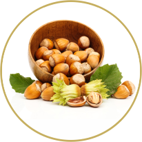 Corylus avellana Nut Oil